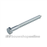 PROFTEC houtdraadbout DIN571 4.6 VZ. 10X40 25